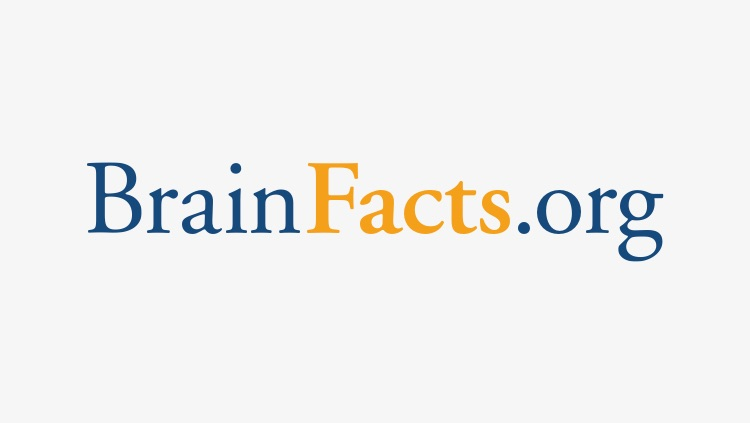 BrainFacts.org, a public information initiative of The Kavli Foundation, the Gatsby Charitable Foundation and the Society for Neuroscience