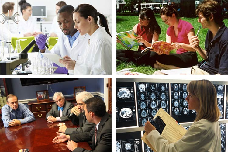 Neuroscientists can pursue many careers including academia, science publishing, advocacy, and clinical work.