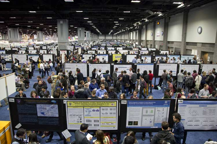 SfN is gearing up for Neuroscience 2015 in Chicago October 17-21.