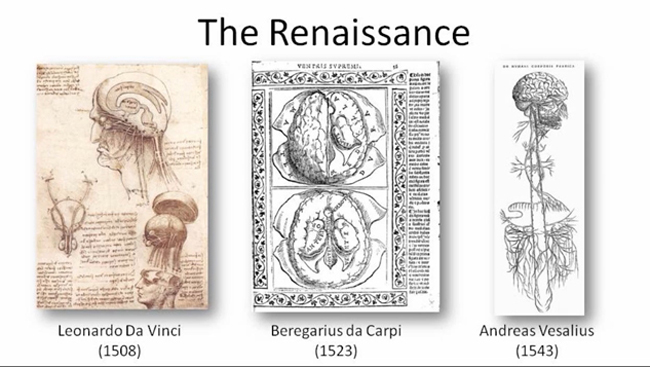 Images of developments in brain science during the Renaissance