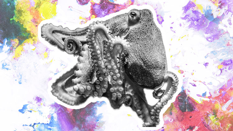 Octopus with tie dye background