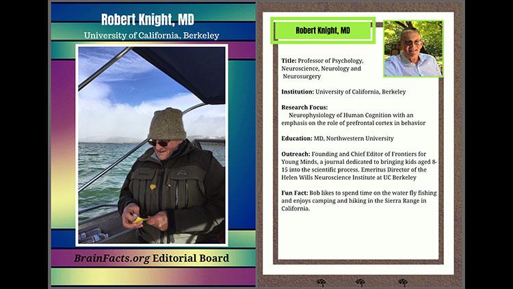 Robert Knight editorial board card