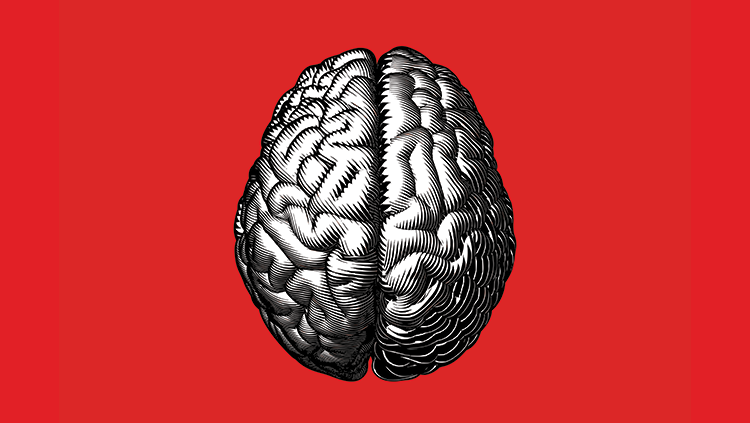 Animated brain on red background