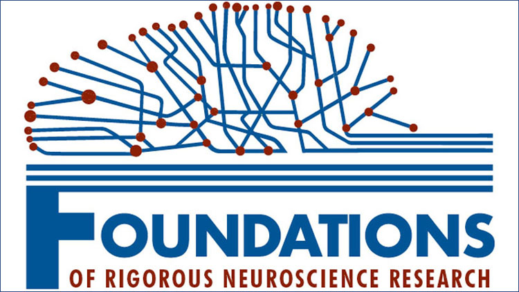 "Image of a brain made up of blue outlines above the words ""Foundations of Rigorous Neuroscience Research"""