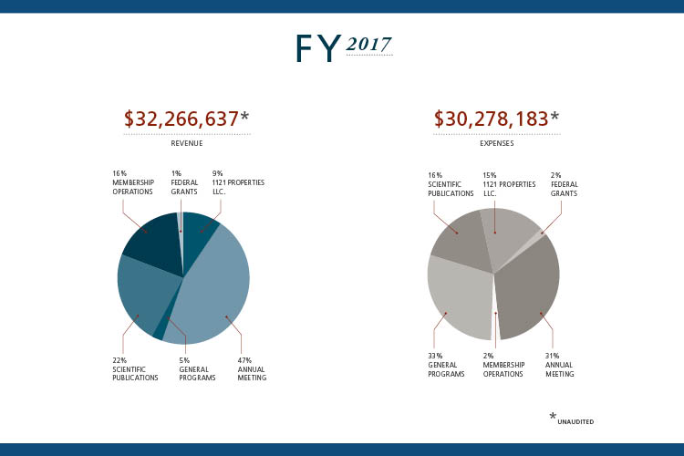 FY 2017 financial highlights pie charts