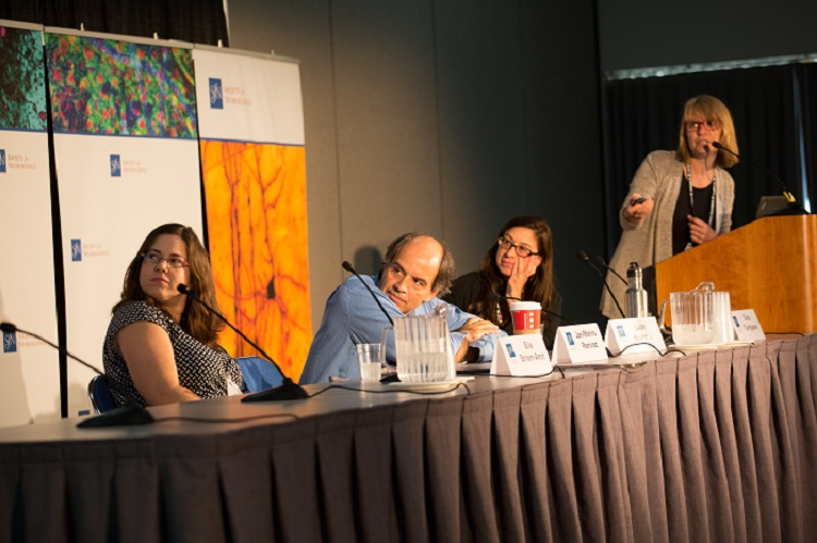 Sensory Development Press Conference