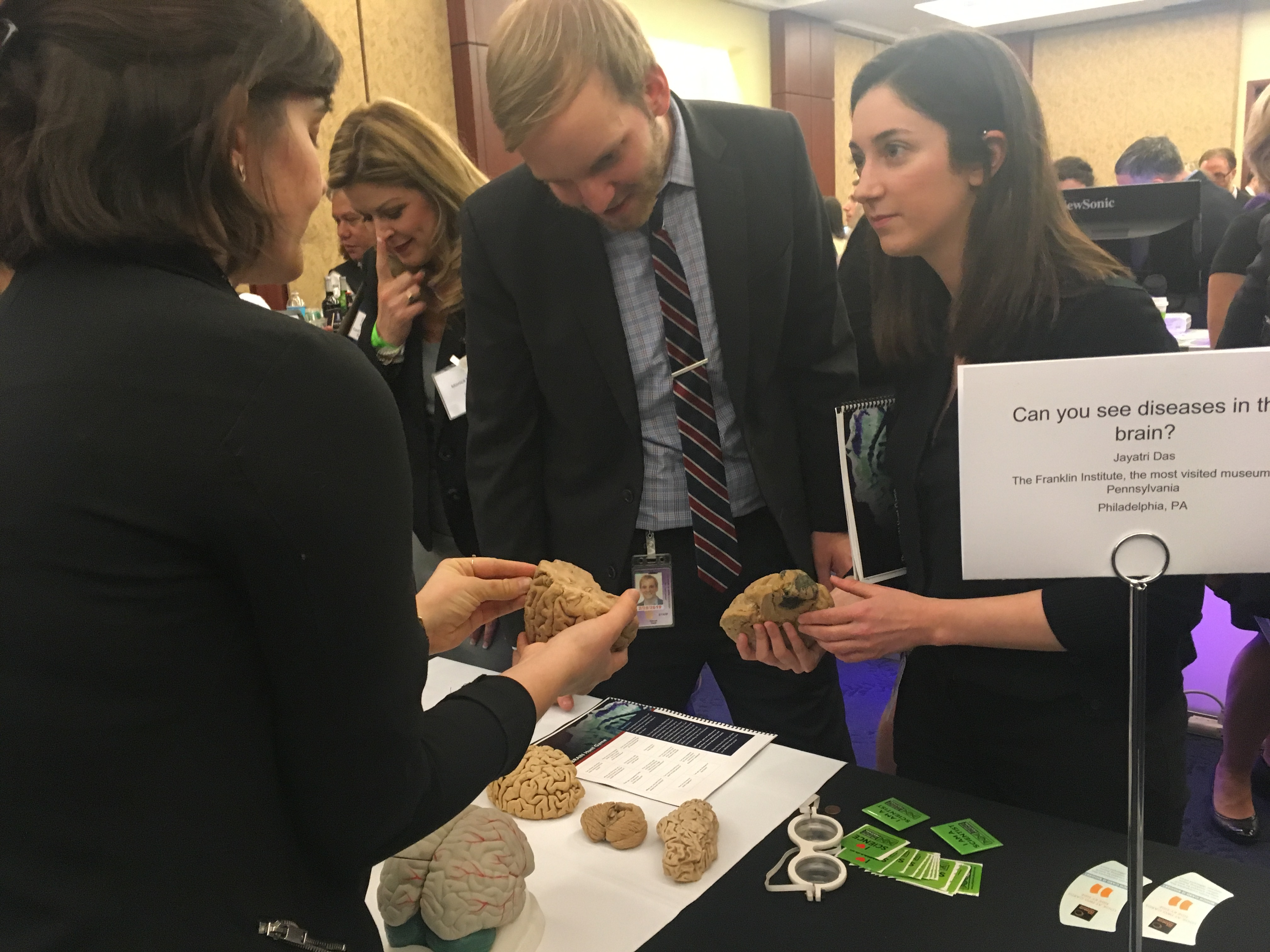 people looking at brain models at the 2018 Brain Fair table