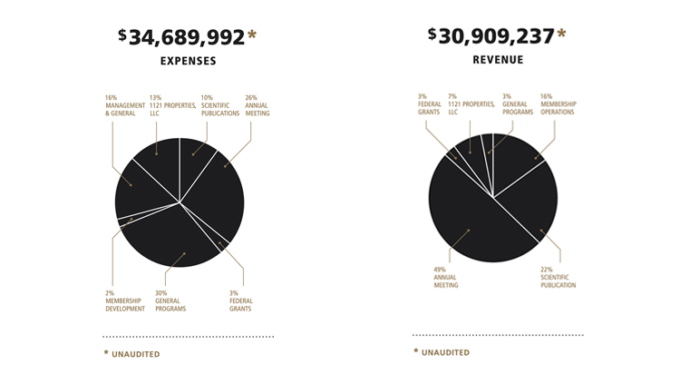 FY19 financials pie chart depicting SfN's expenses and revenue