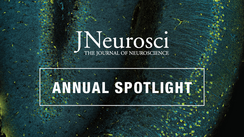 """Text stating """"JNeurosci Annual Spotlight"""" over a blue and green background."""