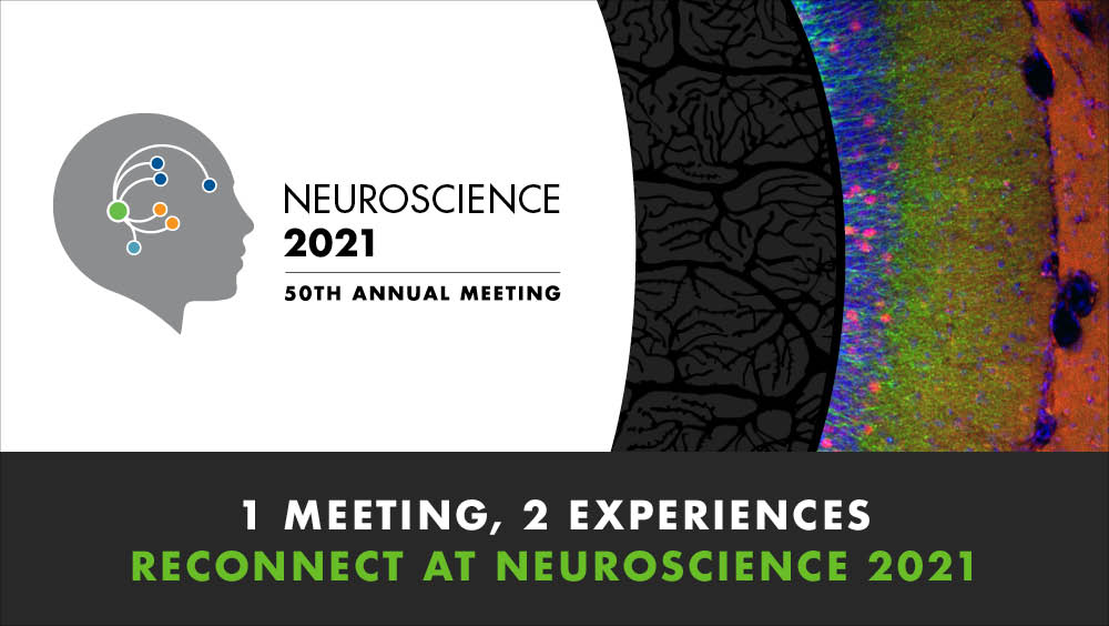"""Image of the Neuroscience 2021 logo with the text """"1 meeting, 2 experiences: Reconnect at neuroscience 2021"""""""