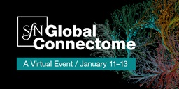 SfN Global Connectome logo for sharing on Instagram