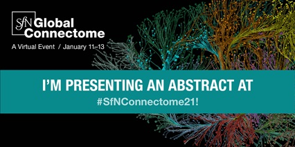 "SfN Global Connectome logo social media image ""I'm presenting an abstract at #SfNConnectome21"""