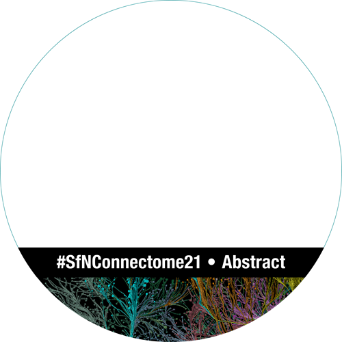 "SfN Global Connectome logo for social media profile ring ""#SfNConnectome21 Abstract"""