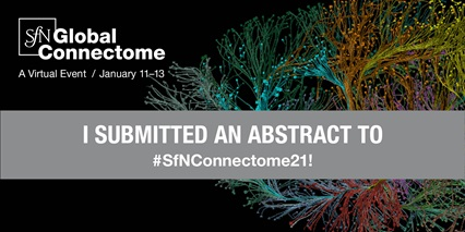 "SfN Global Connectome logo social media image ""I submitted an abstract to #SfNConnectome21"""