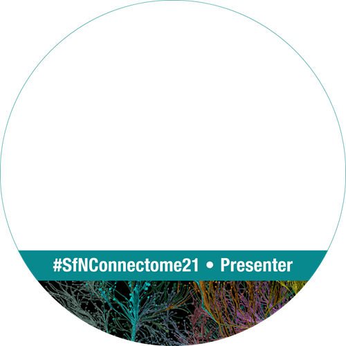 "SfN Global Connectome logo for social media profile ring ""#SfNConnectome21 Presenter"""