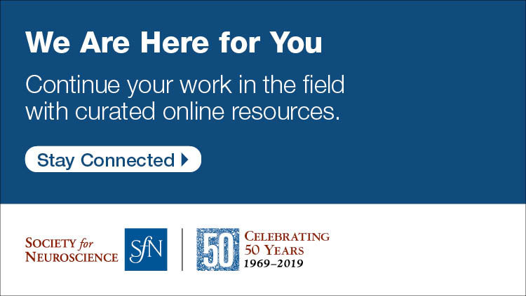 We are here for you. Continue your work in the field with curated online resources. Stay connected. SfN 50th Anniversary logo.