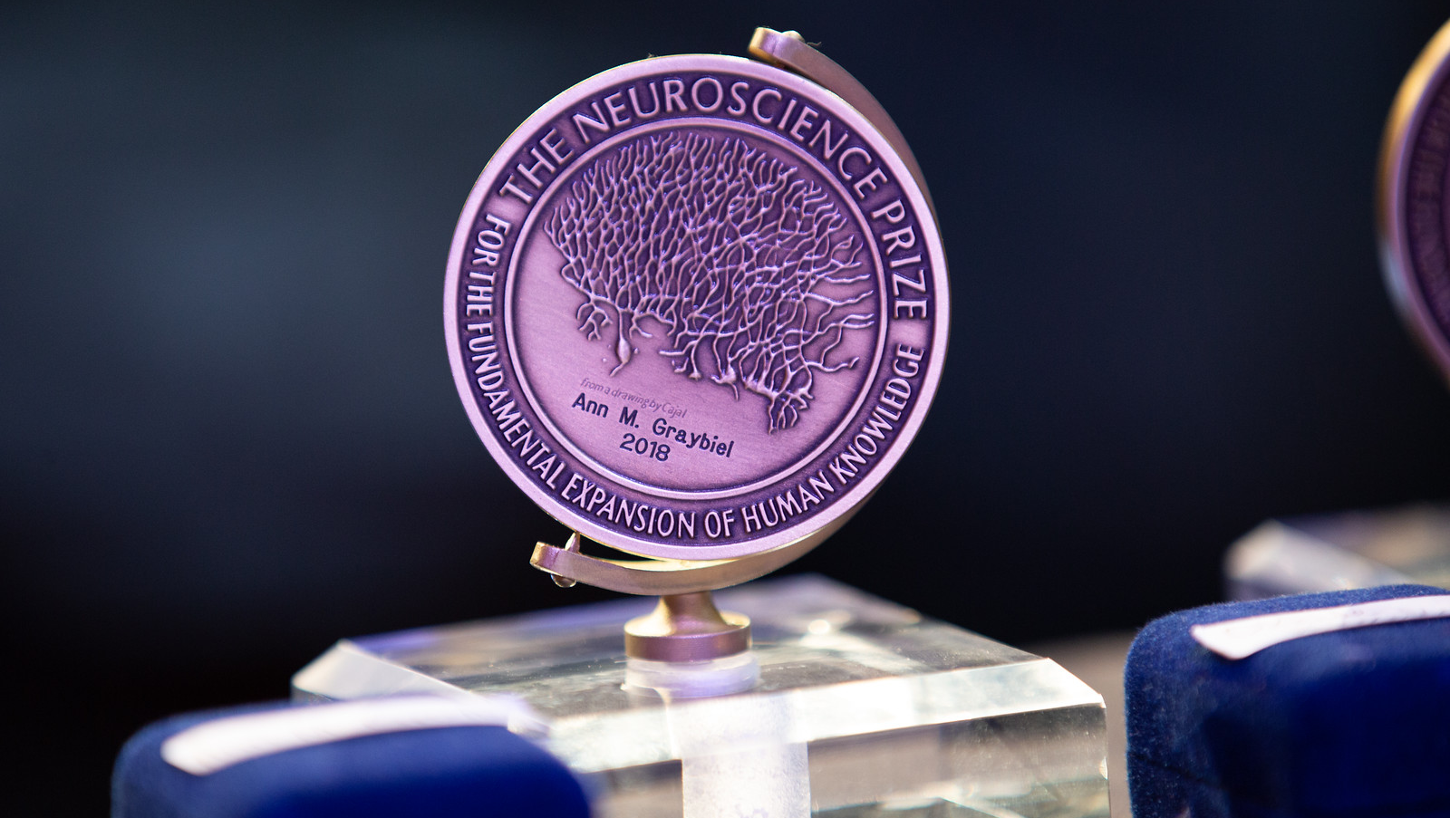 Ann M. Graybiel's the Neuroscience Prize for the Fundamental Expansion of Human Knowledge award