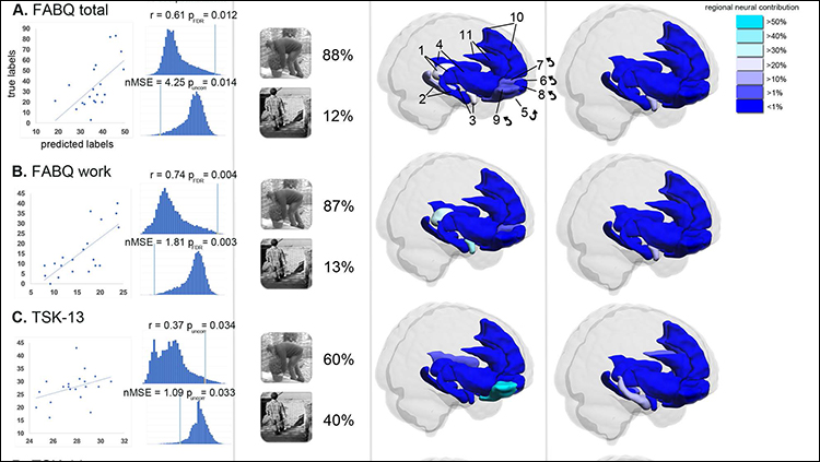 Brain Activity Predicts Fear of Pain