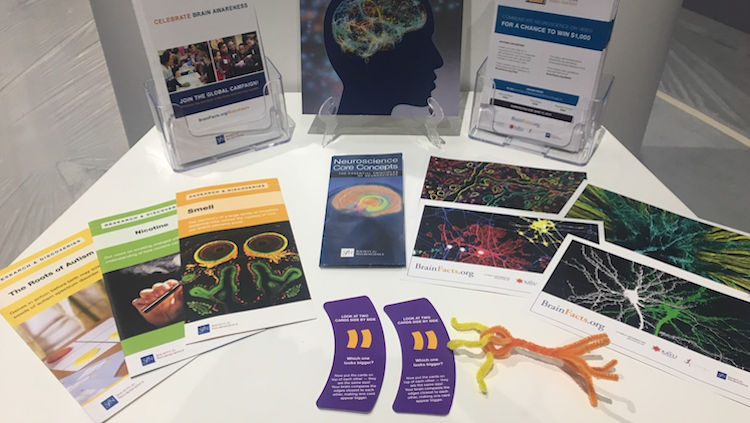Pamphlets and other materials about increasing brain awareness at an Annual Meeting exhibit booth