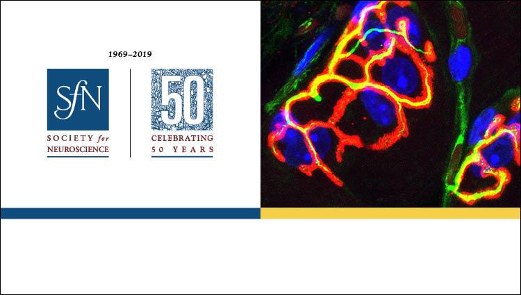 SfN 50th Anniversary logo