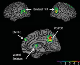 Key brain areas involved in persuasion, including the temporoparietal junction (TPJ), the ventral striatum, and the medial prefrontal cortex (DMPFC).