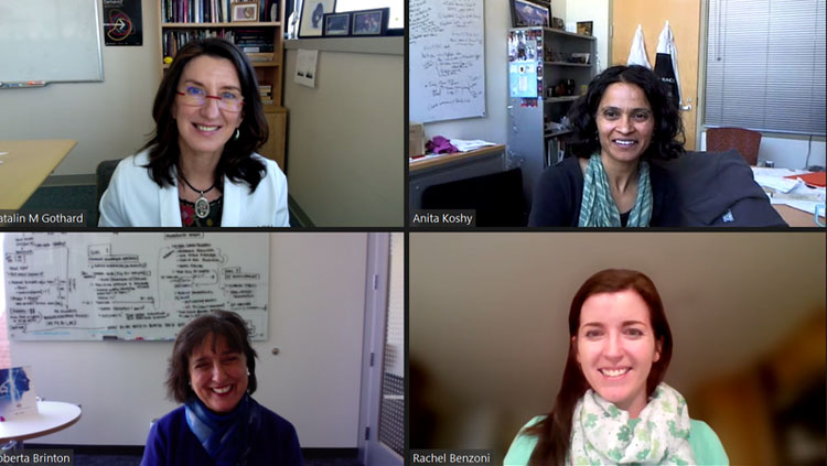 Image of a zoom call with four participants.