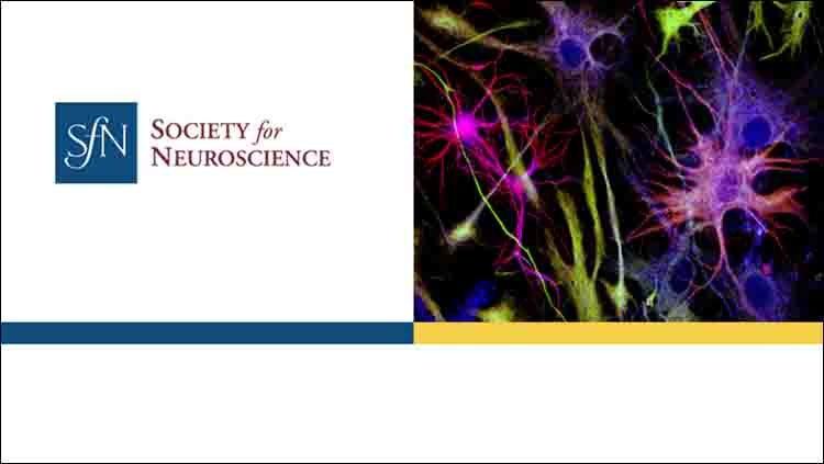 Society for Neuroscience logo.