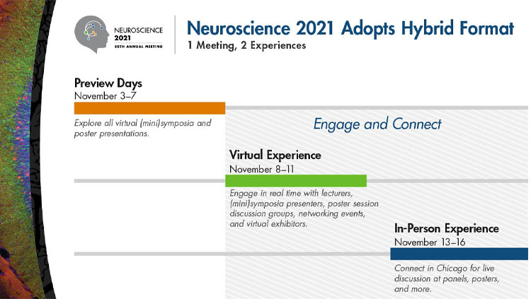 Image of the dates for Neuroscience 2021 hybrid and in-person meeting.